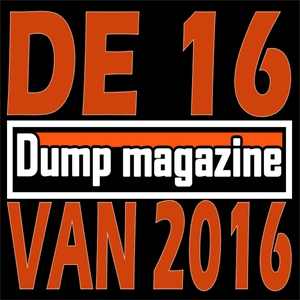 De 16 pop-/rock-/hiphopplaten van 2016
